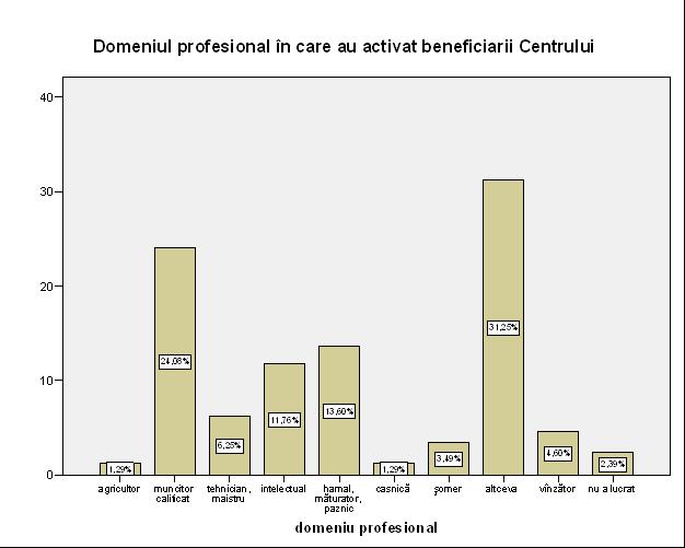 """Figura nr. 1: Repartizarea răspunsurilor din chestionarul de admitere în Centru la rubrica """"Domeniul profesional în care aţi activat""""."""