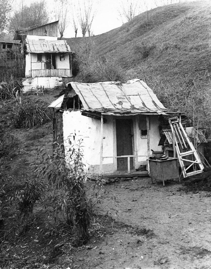 325-1932 groapa Floreasca